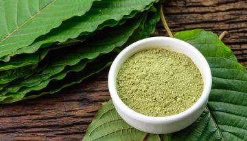 What Is Kratom? All You Wanted To Know About Kratom!